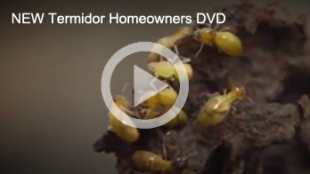 Termidor new home owners video